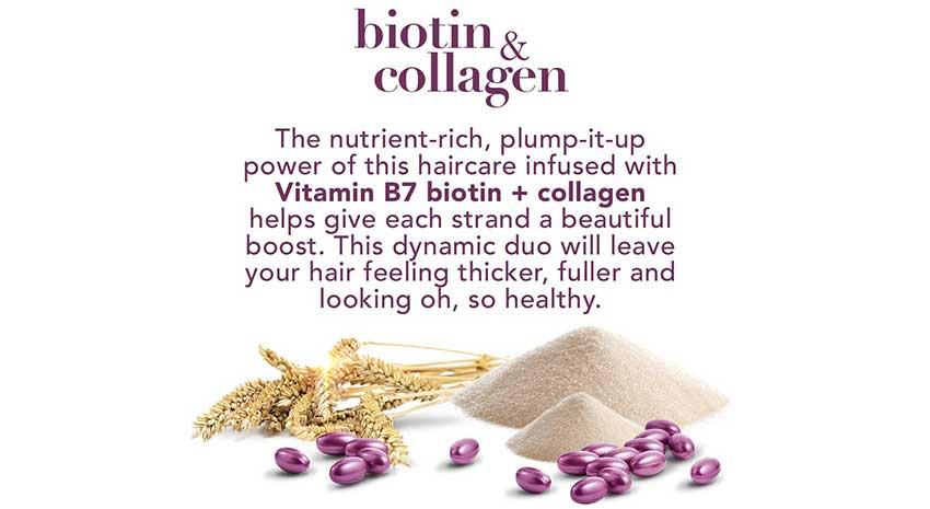 %E2%80%8BOGX-Biotin-%26-Collagen-Shampoo